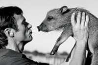 Kissing a peccary.
