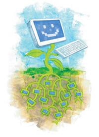 computer plant