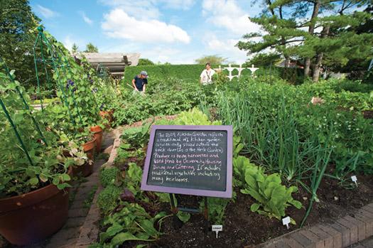 Allen Gardens