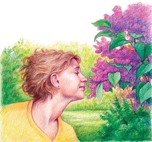 Flower-sniffer_525
