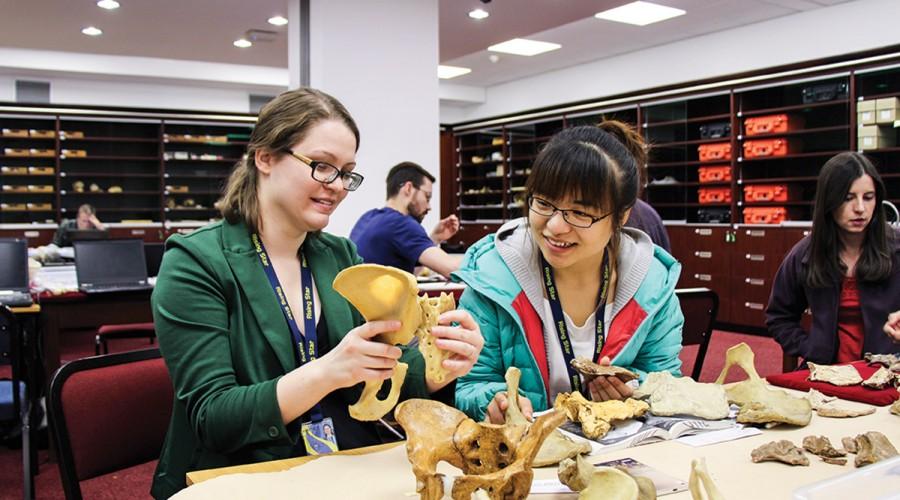 Caroline VanSickle and a colleague study a hip specimen