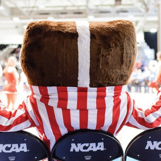 Bucky sitting in an NCAA Final Four chair