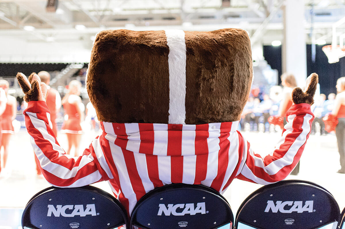 Bucky Badger sitting in NCAA chairs