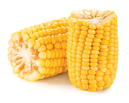 GE corn was introduced in 1996.