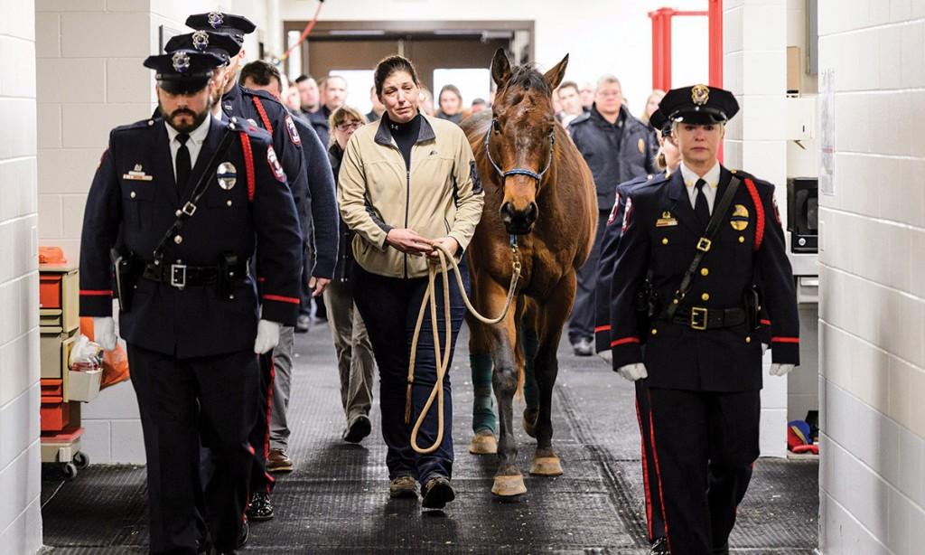 UWPD_horse_Vegas17_8284