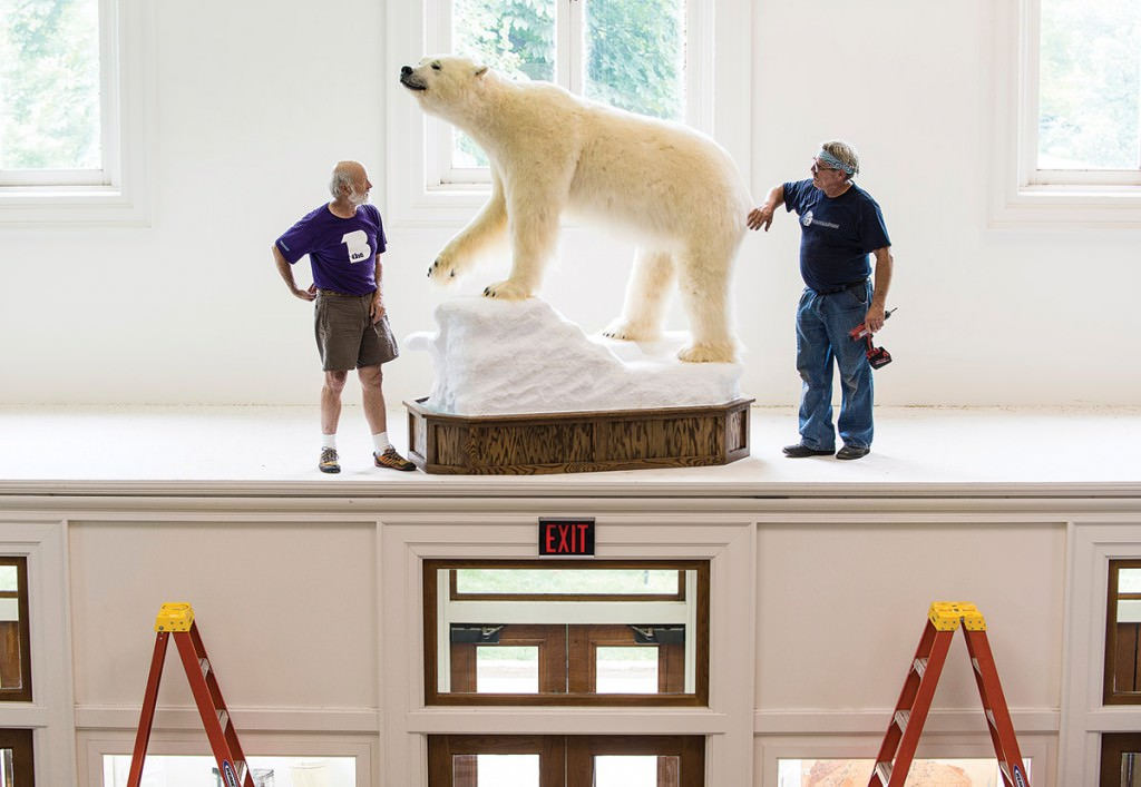Two men inspect a stuffed polar bear on a ledge in Birge Hall at the University of Wisconsin Madison.