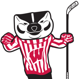 Illustration of Bucky Badger holding hockey stick.