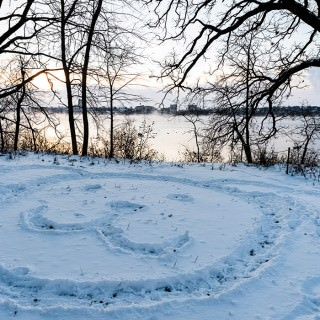 Drawing of dog face in snow at Picnic Point in winter.