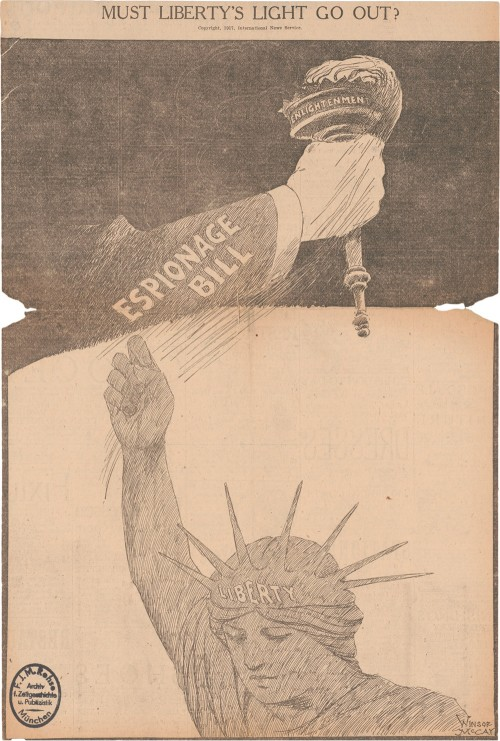 Editorial cartoon picturing a hand grabbing away Lady Liberty's torch.