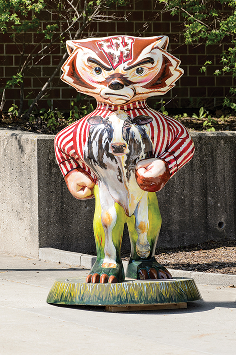 Bucky statue painted with cow on front