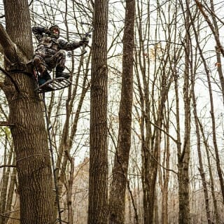 Bow hunter sits in tree