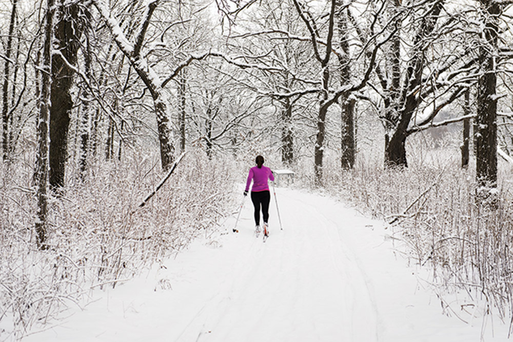 A woman skis down a snow-covered path in the UW Arboretum