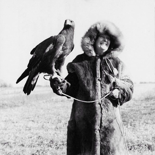 Frances Hamerstrom holds broad-winged hawk