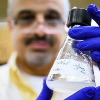 UW–Madison professor Adel Talaat