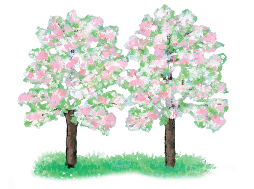 Illustration of two flowering trees